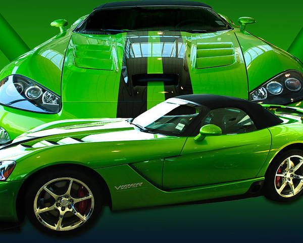 Green Poster featuring the photograph Green Viper by Jim Hatch