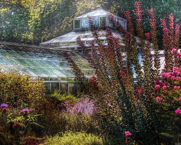 Savad Poster featuring the photograph Greenhouse - The Greenhouse by Mike Savad