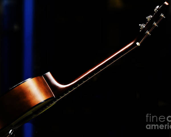 Guitar Poster featuring the photograph Guitar by Sheila Smart Fine Art Photography