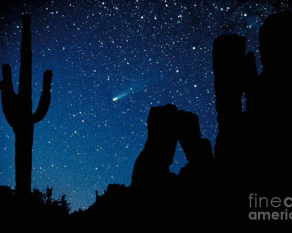 Halley's Comet Poster featuring the photograph Halley's Comet by Frank Zullo
