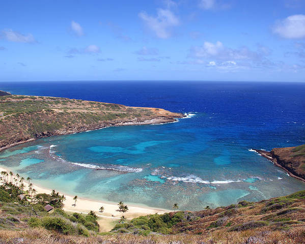 Bay Poster featuring the photograph Hanauma Bay Underwater Park by Kevin Smith