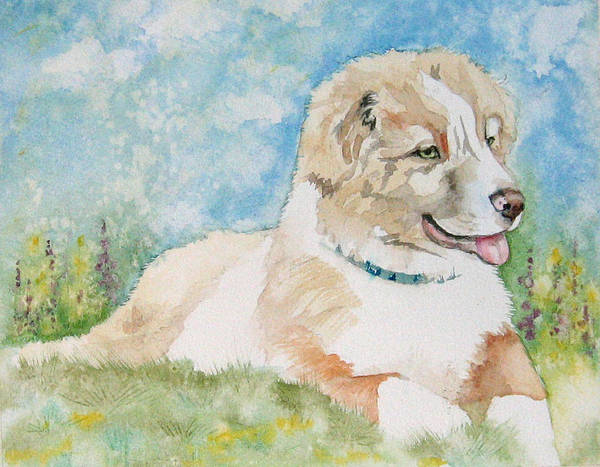 Canine Poster featuring the painting Hank by Gina Hall