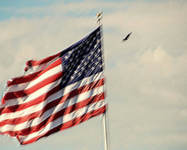 Photography Poster featuring the photograph Happy Birthday America by Susanne Van Hulst
