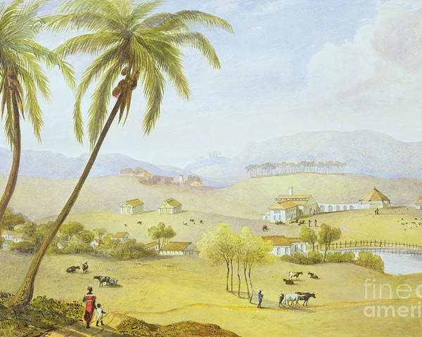 Haughton Poster featuring the painting Haughton Court - Hanover Jamaica by James Hakewill