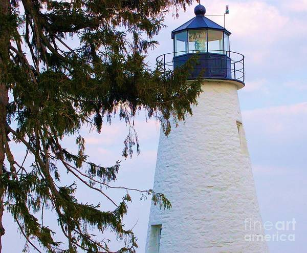 Lighthouse Poster featuring the photograph Havre De Grace Lighthouse by Debbi Granruth