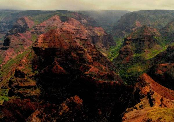 Canyon Poster featuring the photograph Hawaii Grand Canyon by Michael Bergman