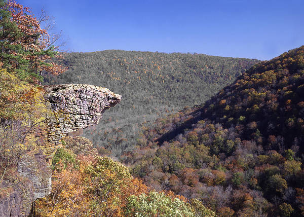Hawksbill Crag Poster featuring the photograph Hawksbill Crag by Curtis J Neeley Jr