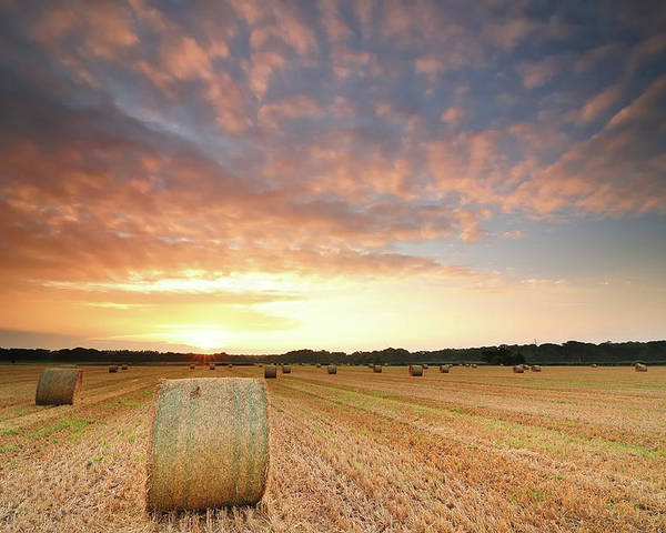 Horizontal Poster featuring the photograph Hay Bale Field At Sunrise by Stu Meech
