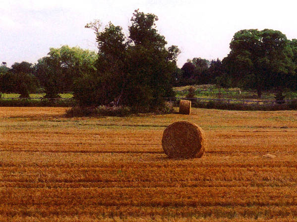 Landscape Poster featuring the photograph Hay Rolls 2 Db 2 by Lyle Crump