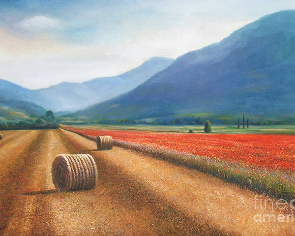 Poppies Poster featuring the painting Haybales In Italy by Ann Cockerill