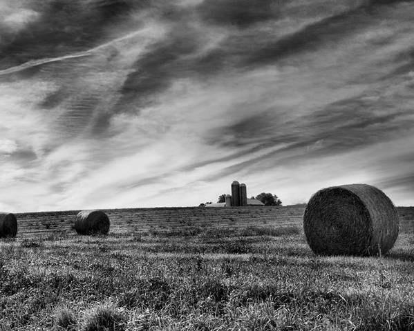 Hay Poster featuring the photograph Hayrolls And Field by Steven Ainsworth