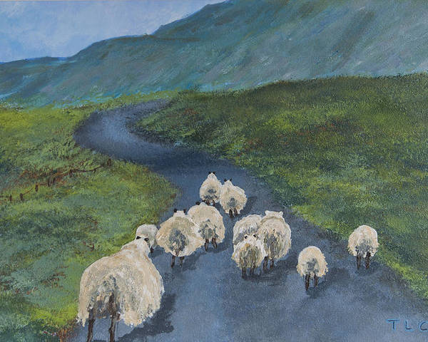 Sheep Poster featuring the painting Heading Home by Teresa Cairns