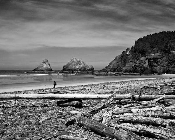 Landscape Poster featuring the photograph Heceta Head Lighthouse by Lee Santa