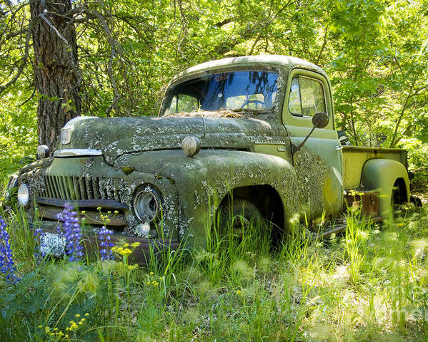 Truck Poster featuring the photograph Hiding by Idaho Scenic Images Linda Lantzy