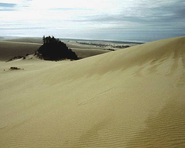 Oregon Dunes National Recreation Area Poster featuring the photograph High Dunes 1 by Eike Kistenmacher