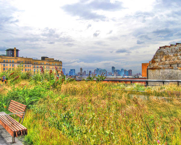 High Line Park Poster featuring the photograph High Line On The Hudson by Randy Aveille