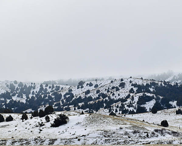 Winter Poster featuring the photograph Hills In Fog by Kellie Prowse