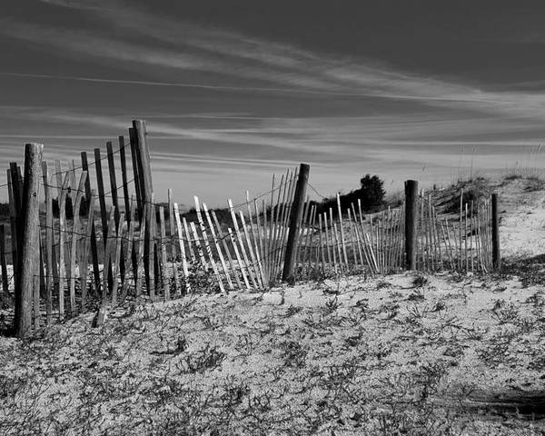 Little Talbot Island Poster featuring the photograph Holding Back The Dunes In Black And White by Spencer Studios