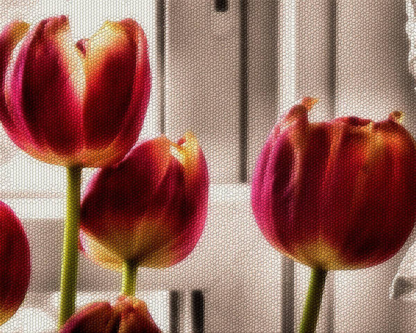 Flowers Poster featuring the photograph Home by Karen Scovill