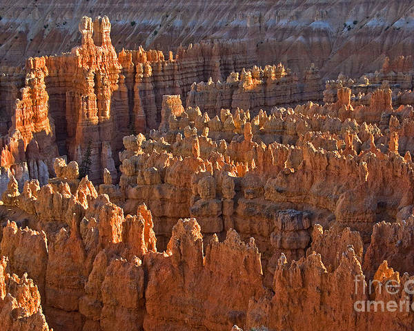 Hoodoos Poster featuring the photograph Hoodoos At Black Birch Canyon by Neil Doren