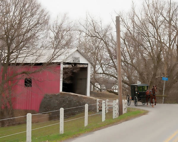 Bridge Poster featuring the photograph Horse Buggy And Covered Bridge by David Arment