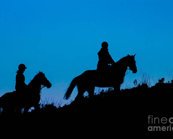 Poster featuring the photograph Horses On The Mountain by Marc Daly