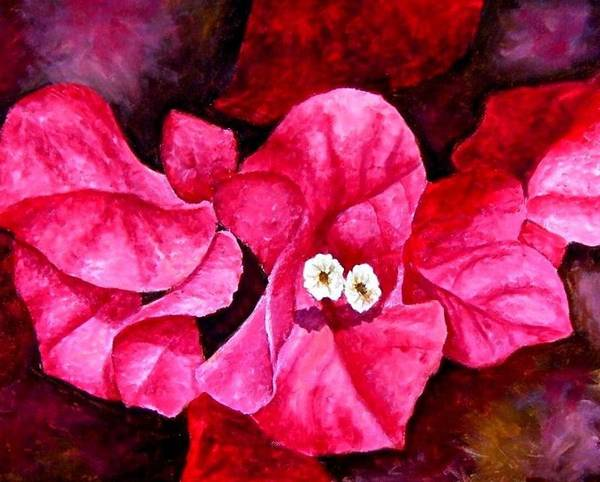 Oil Poster featuring the painting Hot Pink Bougainvillea by Darla Brock