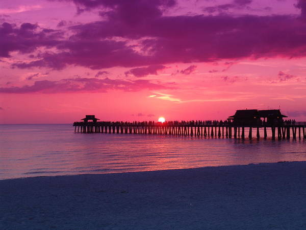 Sunset Poster featuring the photograph Hot Purple by Florene Welebny