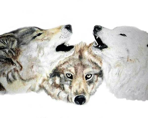 Wolves Poster featuring the painting Howling by Debra Sandstrom