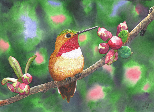 Hummingbird Poster featuring the painting Hummy by Catherine G McElroy