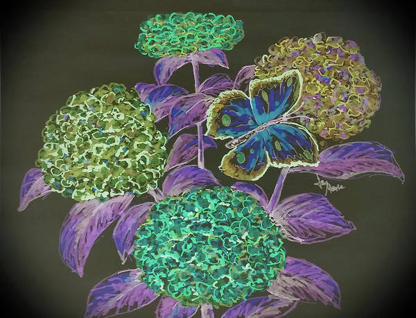 Poster featuring the drawing Hydrangea Negative by Jan Marie