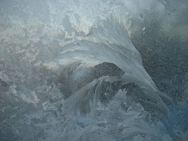 Nature Poster featuring the photograph Ice Crystals 1 by Eric Workman