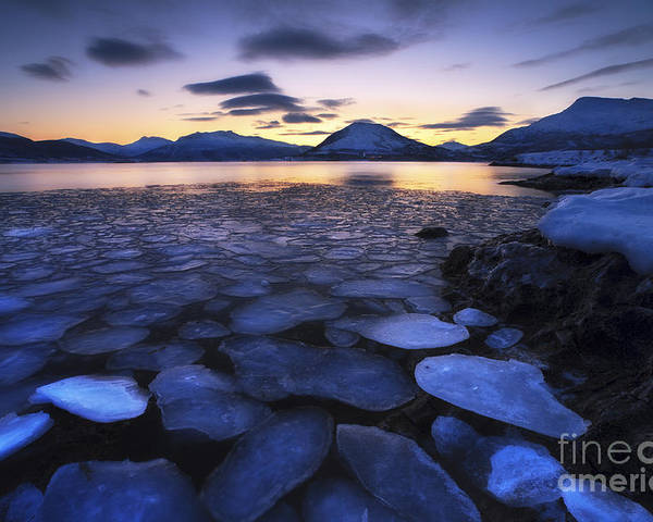 Ocean Poster featuring the photograph Ice Flakes Drifting Against The Sunset by Arild Heitmann