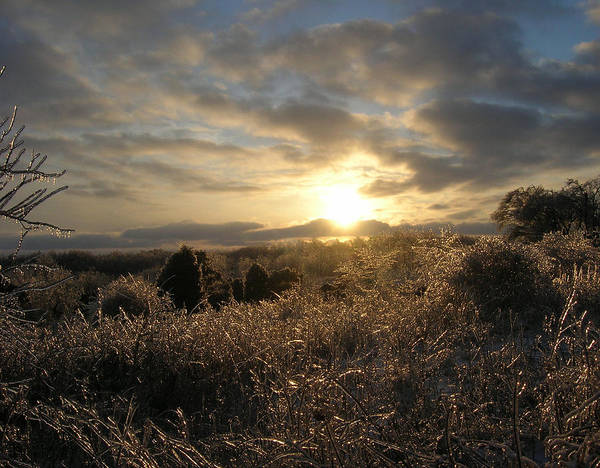 Landscape Poster featuring the photograph Ice To Sun by Martie DAndrea