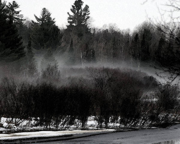 Early Spring Poster featuring the photograph Icy Fog by Frank Guemmer