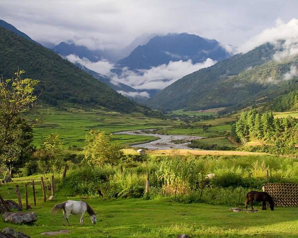 Landscape Poster featuring the photograph Idyllic Landscape Arunachal Pradesh by Sam Oppenheim