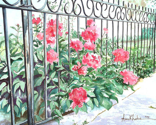 Landscape Poster featuring the painting Imprisoned Peonies by Anne Rhodes