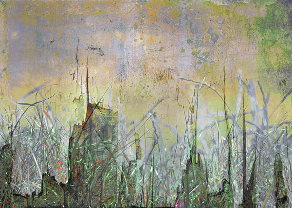 Texture Poster featuring the photograph In The Grass by Hal Halli