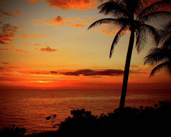 Jamaican Sunset Poster featuring the photograph Jamaican Sunset by Kamil Swiatek