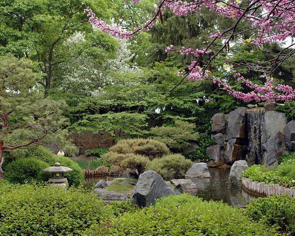 Japanese Garden Poster featuring the photograph Japanese Garden II by Kathy Schumann