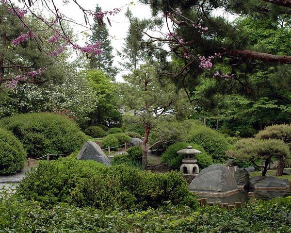 Japanese Garden Poster featuring the photograph Japanese Garden IIi by Kathy Schumann