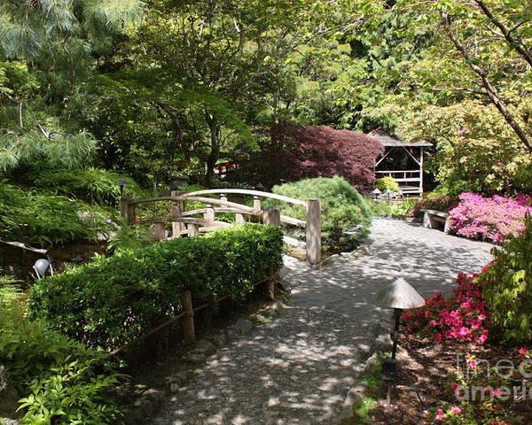 Japanese Garden Poster featuring the photograph Japanese Garden Path With Azaleas by Carol Groenen