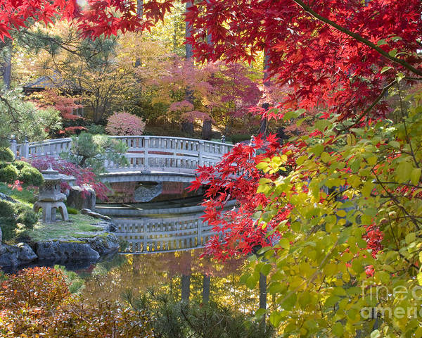 Gardens Poster featuring the photograph Japanese Gardens by Idaho Scenic Images Linda Lantzy