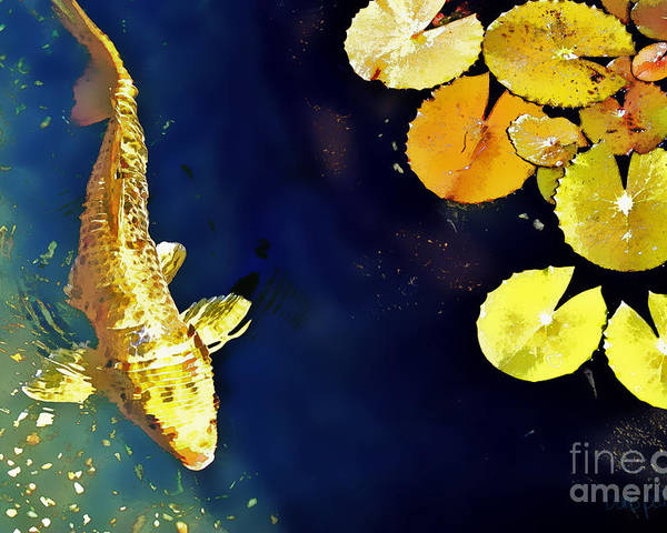 Koi Poster featuring the photograph Jewel Of The Water by Barb Pearson