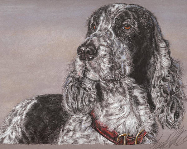 Dog Poster featuring the pastel Johnny by Terry Kirkland Cook