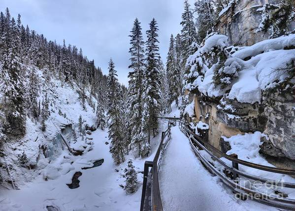 Poster featuring the photograph Johnston Canyon Winter Boardwalk by Adam Jewell