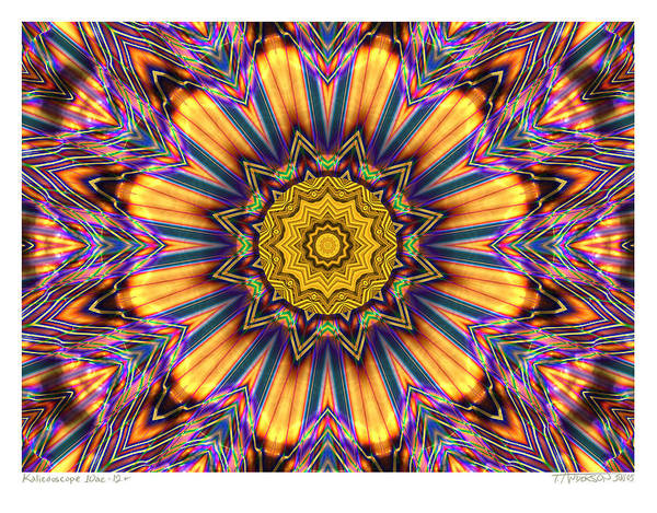 Kaleidoscopes; Mandala Images; Digital Art; Psychedelic Art; Op Art; Mytical Art Poster featuring the digital art kaleido Perfect 10ae 12-plus by Terry Anderson