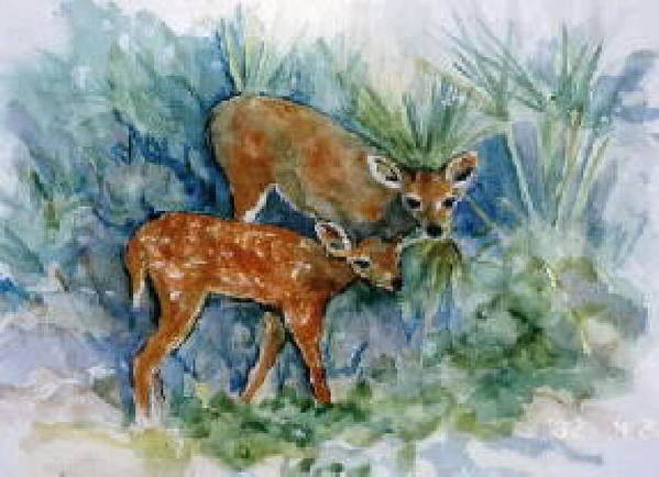 Deer Poster featuring the painting Key Deer by Ruth Mabee