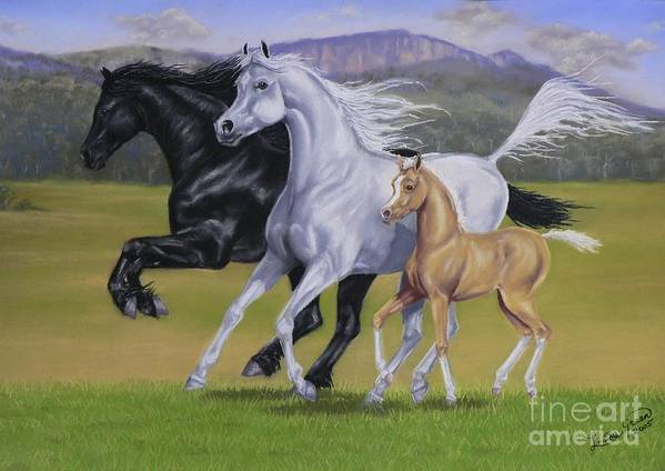 Horse Black White Palomino Stallion Arab Arabian Friesian Coloured Mare Foal Equine Pastel Horses Poster featuring the pastel Kirsties Horses by Louise Green
