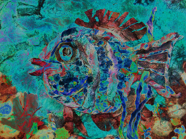 Fish Poster featuring the mixed media Kiss Me by Sue Duda